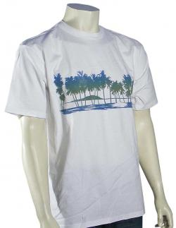 Zoom for Quiksilver Waterman Landscape T-Shirt - White