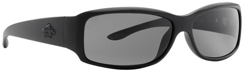 Anarchy Control Sunglasses - Carbon / Smoke