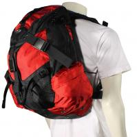 Oakley Icon 3.0 Backpack - Red Line